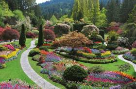 Butchart Gardens Travel Package